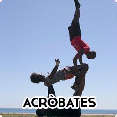 Espectacles : Acròbates